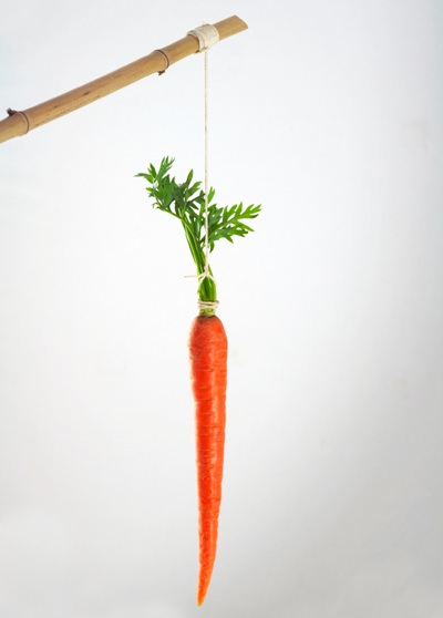 dangling carrot