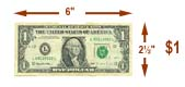 Standard US One Dollar Bill