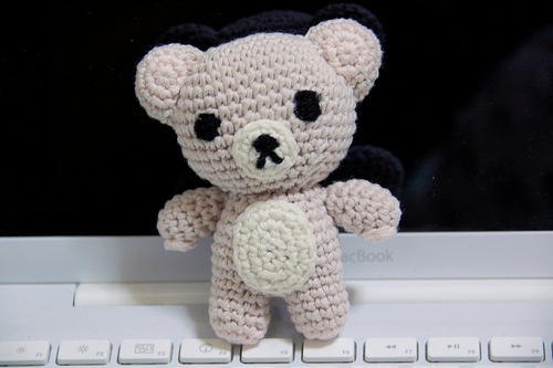 teddy on computer