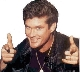 TheHoff