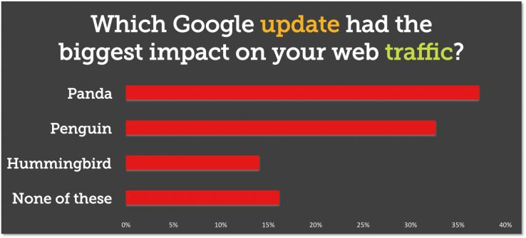 Which Google update had the biggest affect on your web traffic?