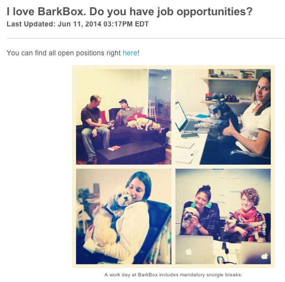 BarkBox's recruiting image