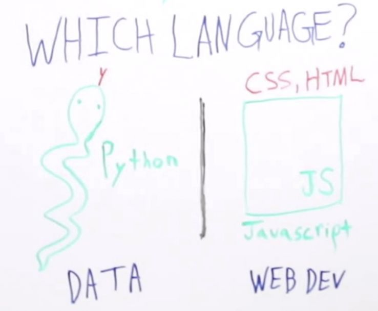 Programming for SEOs - Whiteboard Friday 2