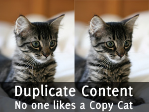 Duplicate Content: No One Likes a Copy Cat