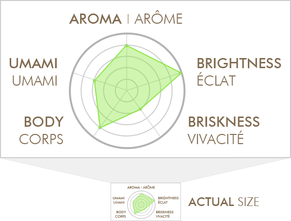 Radar Chart of Tea Taste Profile