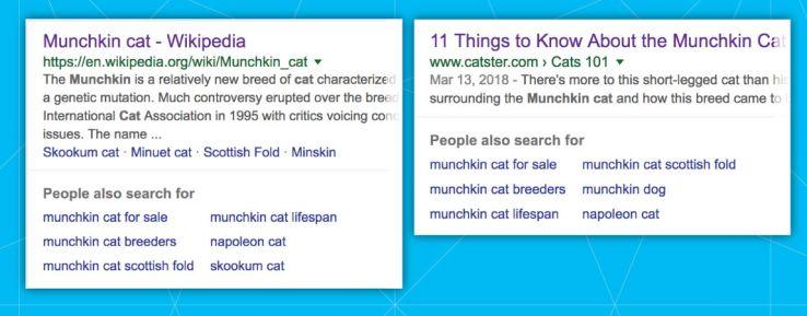 """分析谷歌的栏目""""其他人也在搜索""""-第5张图片"""