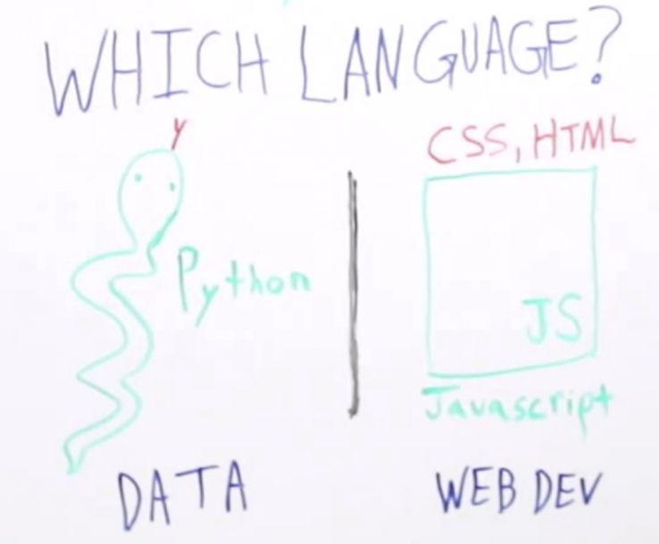 Programming for SEOs - Whiteboard Friday - Moz